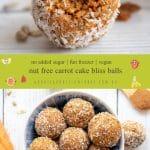 Nut Free Carrot Cake Bliss Balls