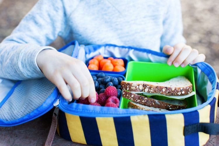 Packing Lunchboxes for Picky Eaters