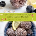 Nut Free Blueberry Bliss Bites